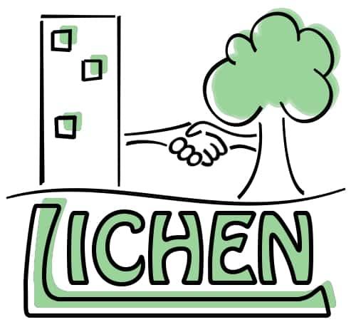 Logo de Lichen