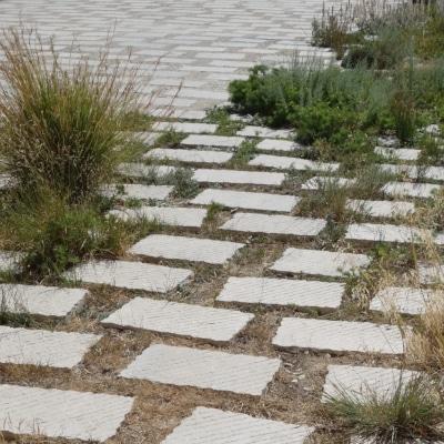 Esplanade de pavés non jointifs et entre lesquelles poussent des plantes