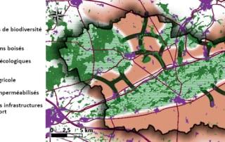Carte des éléments de la sous-trame arborée de Bassée-Montois