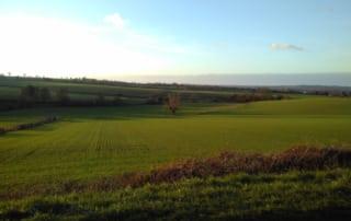 Paysage agricole vallonné