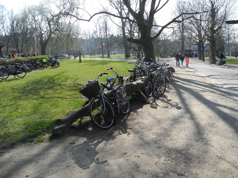 Tronc couché servant de parking à vélos dans un parc
