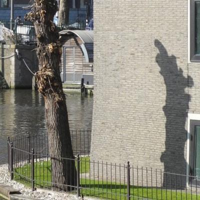 Tronc mort dressé à l'arrière d'un bâtiment, au bord du canal