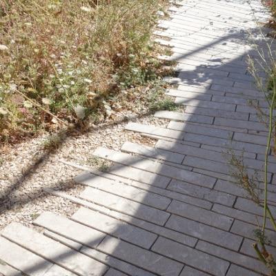 Chemin de pavés non jointifs, aux bords irréguliés et végétalisés