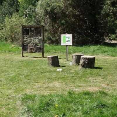Espace vert tondu de façon différenciée pour former un espace destiné aux visiteurs