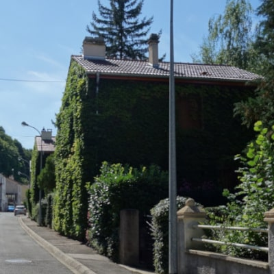 Maisons aux façades couvertes de plantes grimpantes