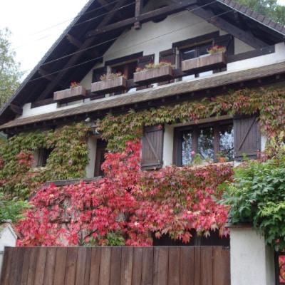 Maison à la façade couverte de lierre vert et rouge