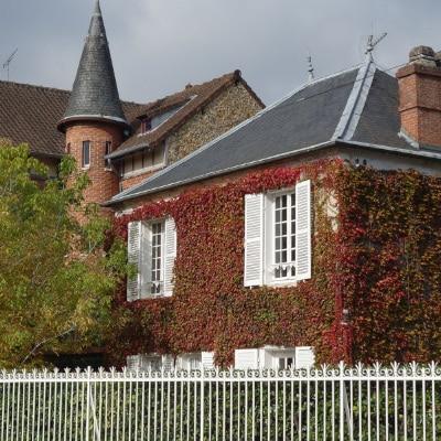 Maison aux façades couvertes de lierre rouge