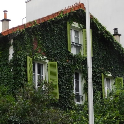 Maison aux façades couvertes de lierre