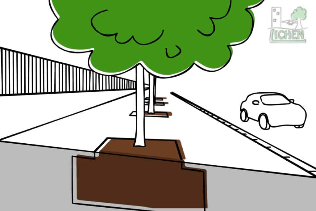 Dessin d'un alignement d'arbres classique, avec une fosse par pied d'arbre