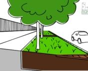 Dessin d'un alignement d'arbres plantés dans une tranchée continue et enherbée