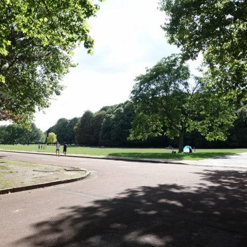 Promenade du parc au sol revêtu