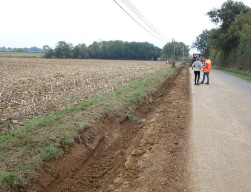 Prise en compte de la biodiversité lors des travaux de pose de lignes électriques