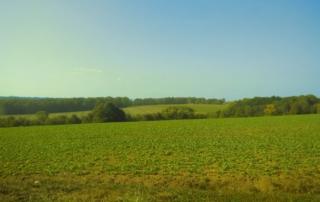 Paysage rural légèrement collineux